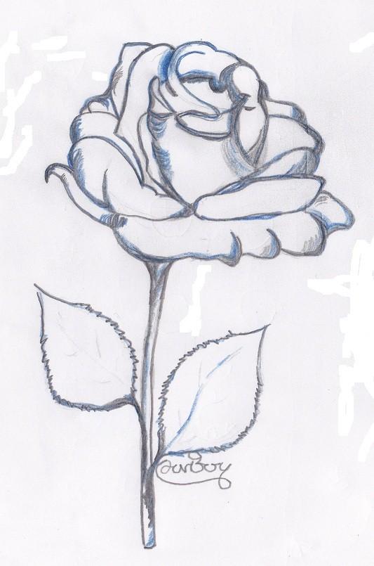 I fiori visti in arte e attraverso la tecnica del disegno for Disegni facili da disegnare a mano libera